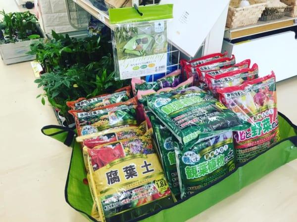 植物と園芸アイテム10