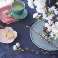 【連載】お家でお花見気分を楽しもう♪桜の飾り方と春色花選びのポイント
