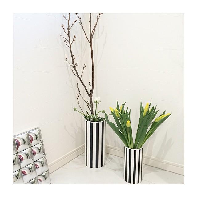 モダンなストライプの花瓶に映える花