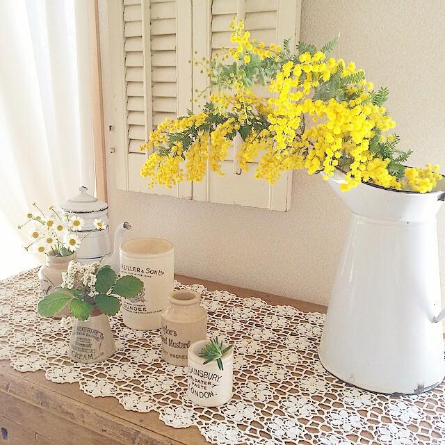 お部屋に植物を置いてナチュラルさをプラス