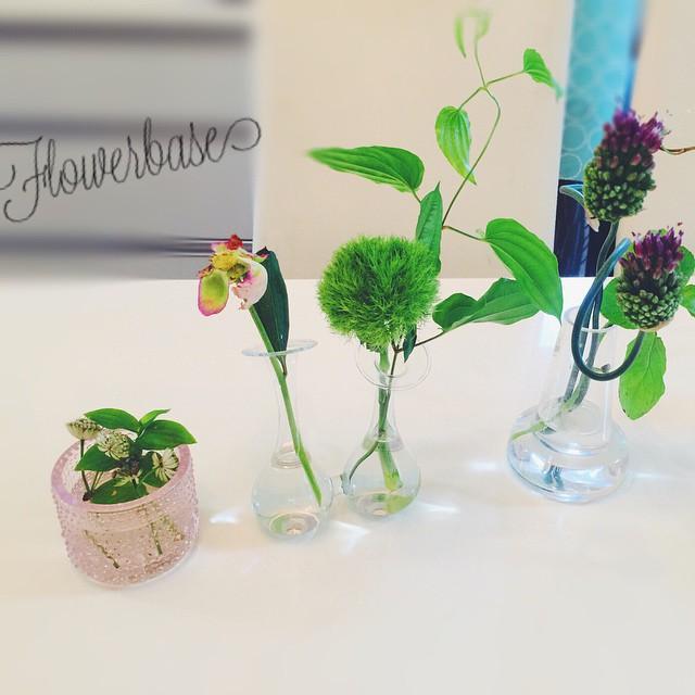 花瓶を選ぶ