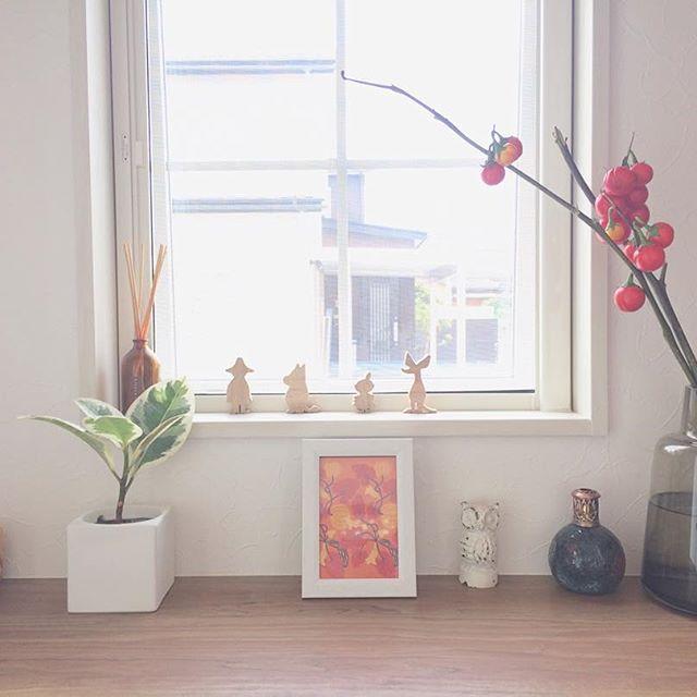 棚飾りに最適な小さい観葉植物