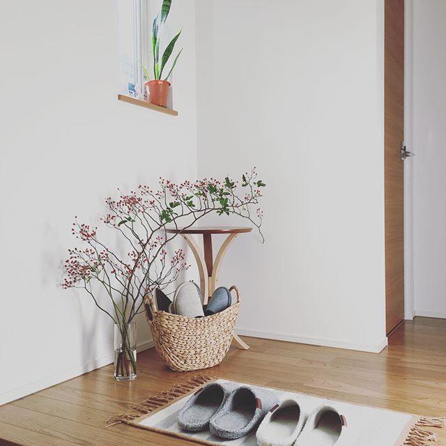 エントランス窓に似合うエレガントな観葉植物
