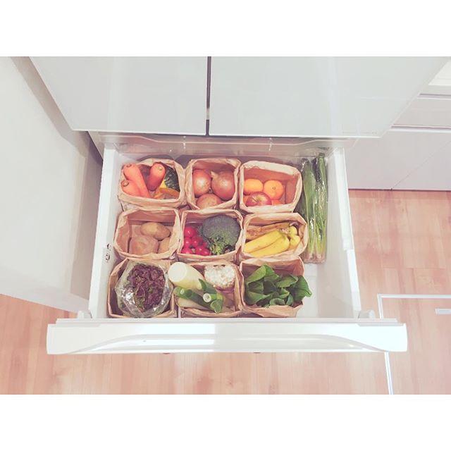 冷蔵庫内を紙袋で区切って整理する方法