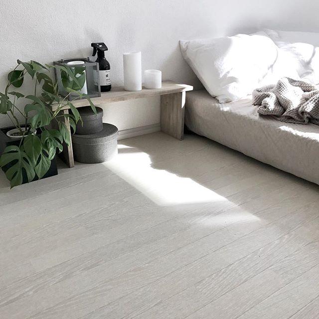 ロータイプのベッドとマッチさせた観葉植物
