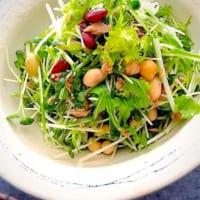 シャキシャキ水菜の美味しい副菜!おつまみにも使える万能レシピでササッと簡単調理♪