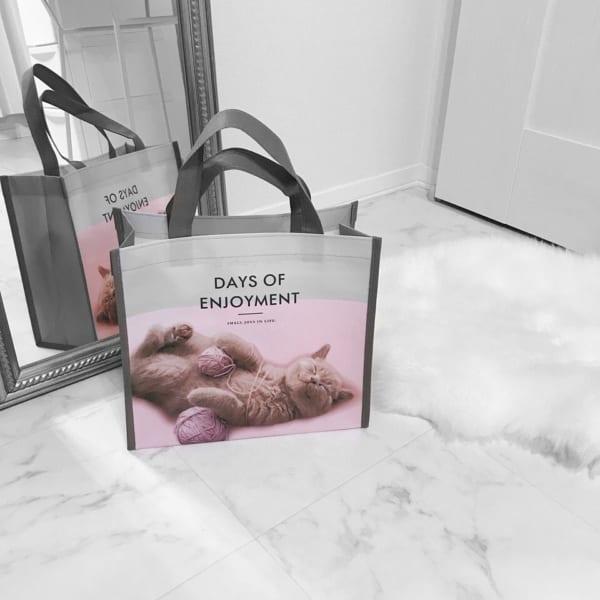 お買い物バッグにもぴったりな不織布トートバッグ