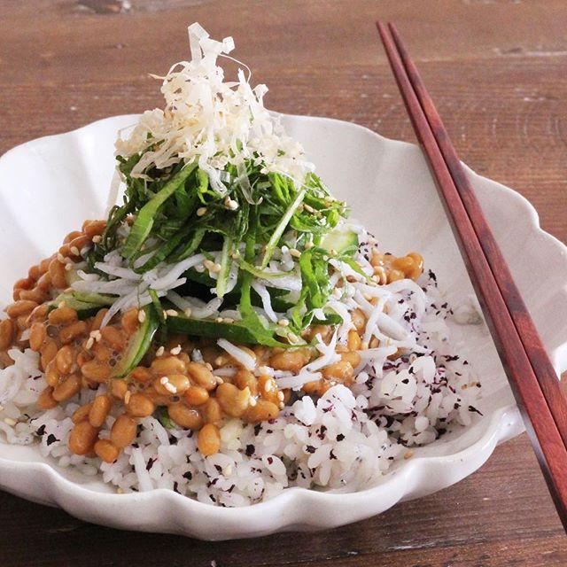 おつまみの最後の〆はこれ!薬味たっぷり納豆ご飯