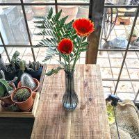 お花のあるインテリア実例集!おしゃれなディスプレイを部屋別にご紹介♪