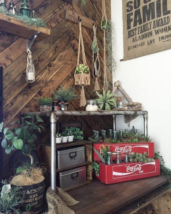 赤色がおしゃれな観葉植物DIY