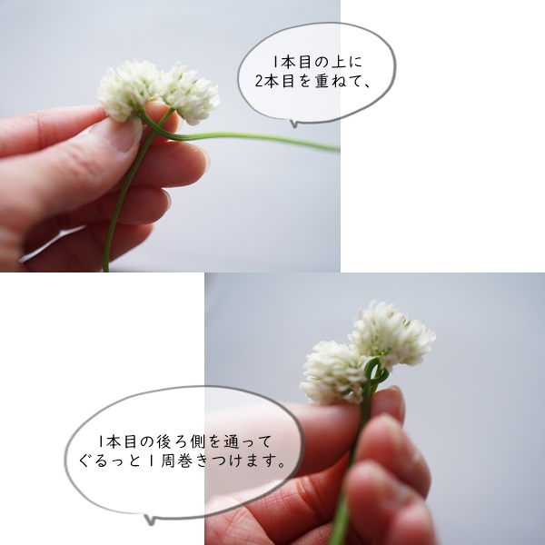 道端の草花7