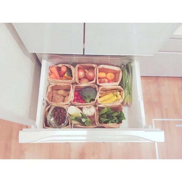 野菜を冷蔵庫に保存収納