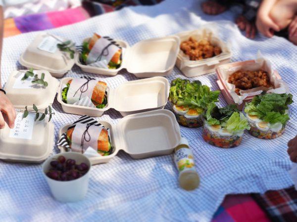 手作りサンドイッチのピクニック