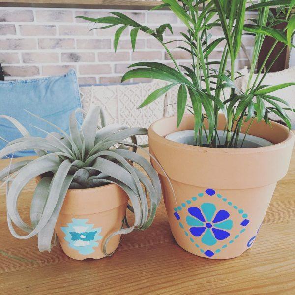 植木鉢も夏色にチェンジ