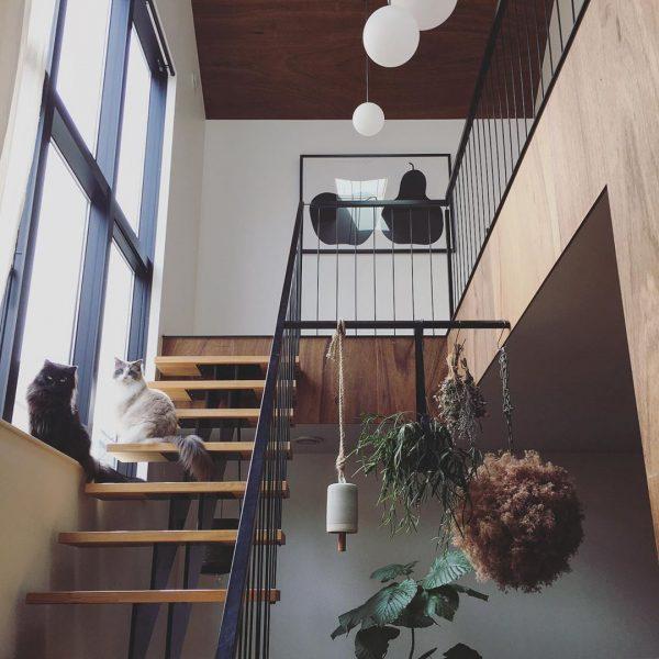 眺めの良いスケルトン階段