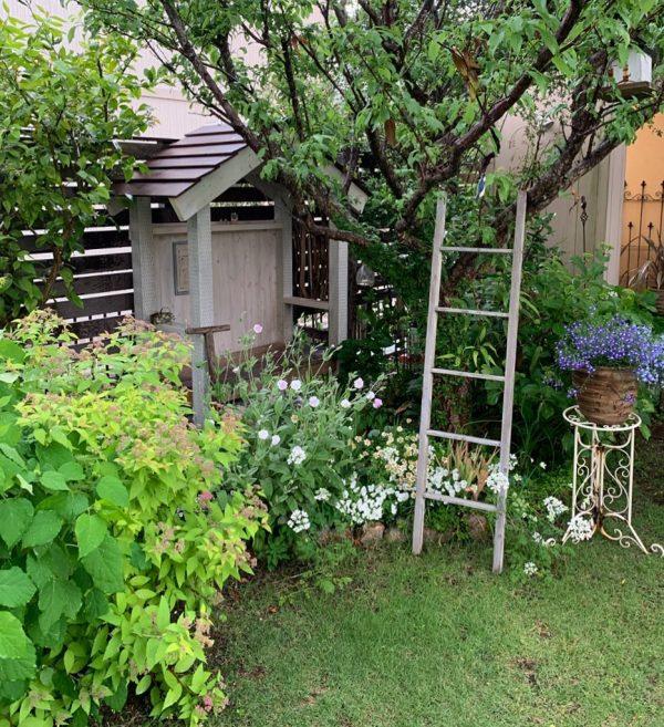 青々とした植栽に癒される緑溢れるお庭