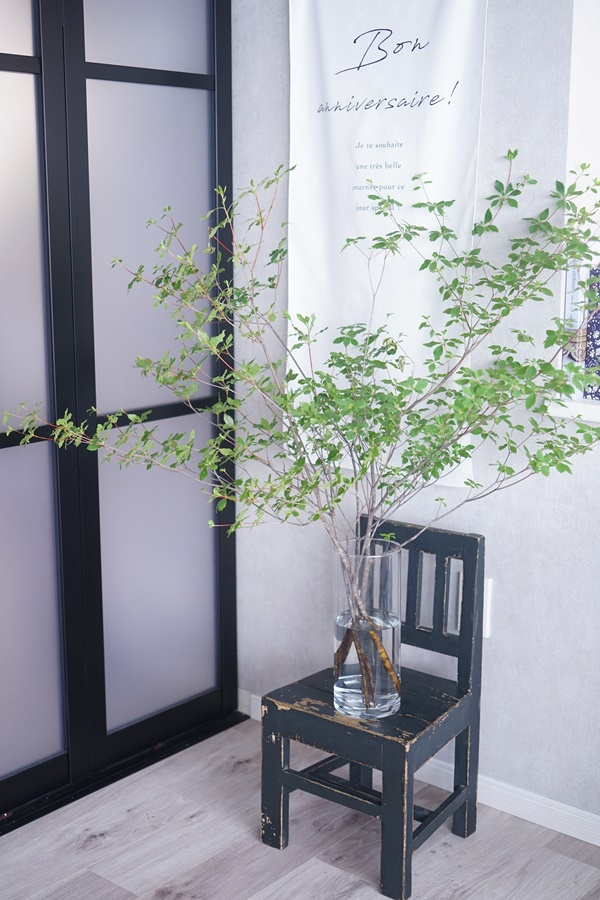 長持ちするコスパの良い枝ものはコレ♪夏のグリーン紹介