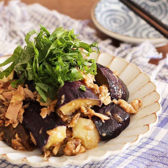 ナス料理☆人気の簡単レシピ《レンジ調理》