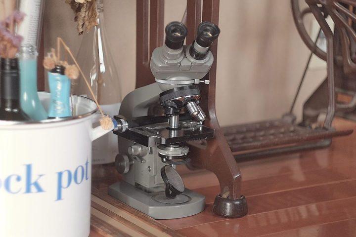学校でよく使っていたような、懐かしい顕微鏡も!