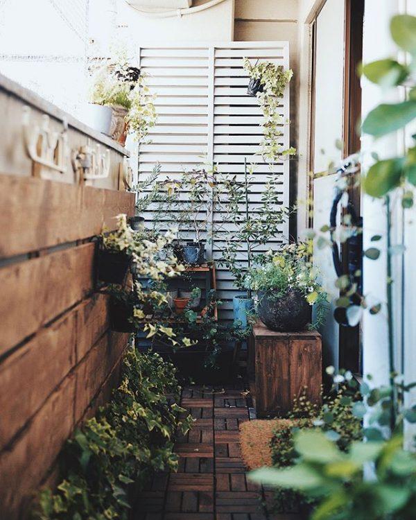 IKEAのウッドデッキを敷き、板壁を立てたベランダにも、植物がいっぱい。