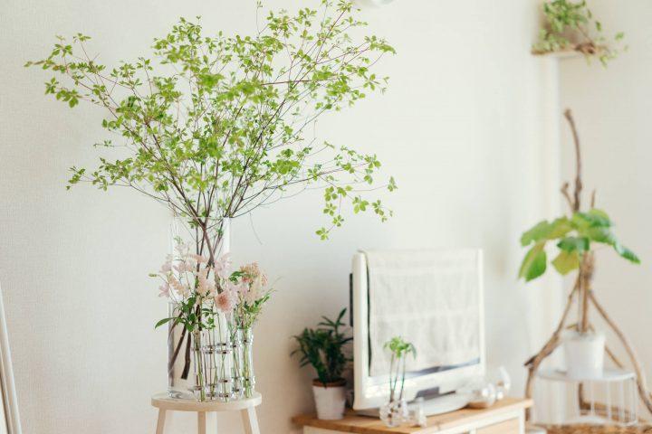 枝物と緑のスワッグ