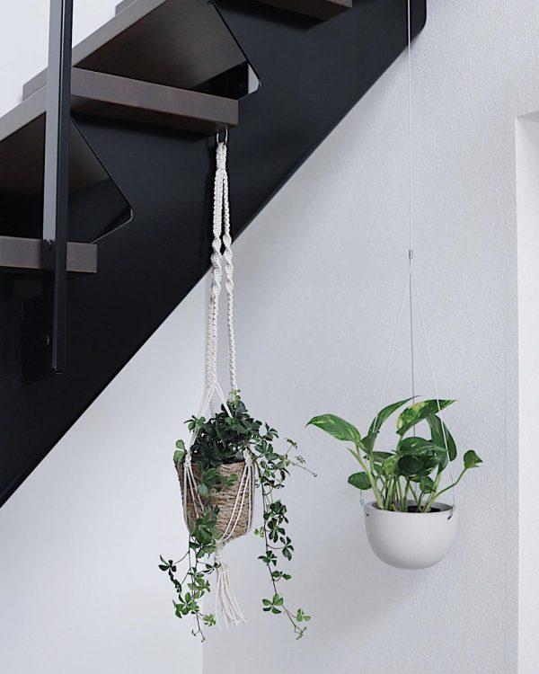 アイアン階段×観葉植物
