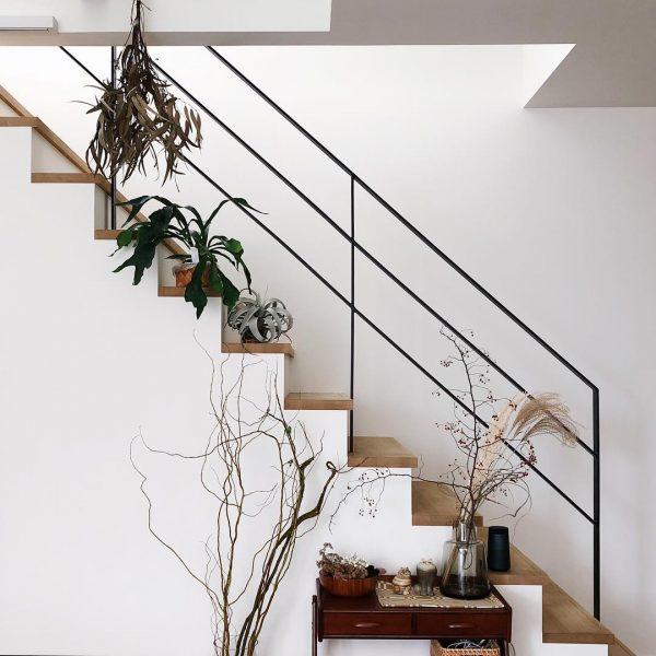 ホワイト×ウッドの階段に植物が好バランス