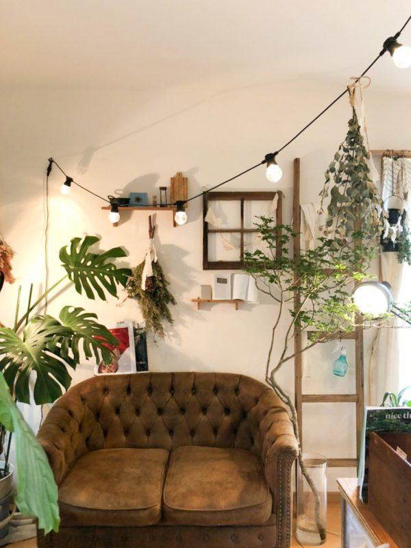 お気に入りのヴィンテージ家具と、たくさんのグリーンf
