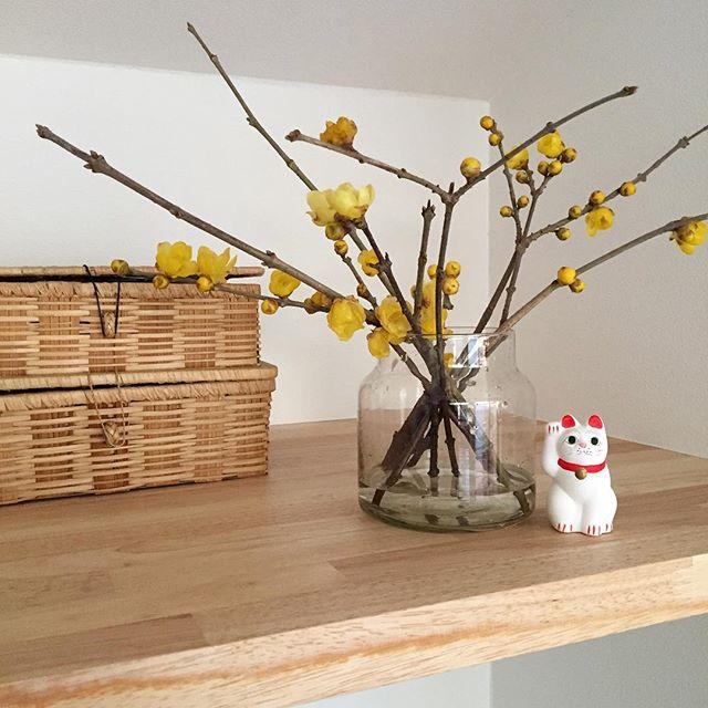 冬におすすめの枝物のインテリア2
