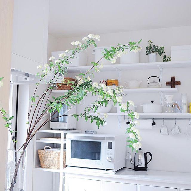 春におすすめの枝物のインテリア