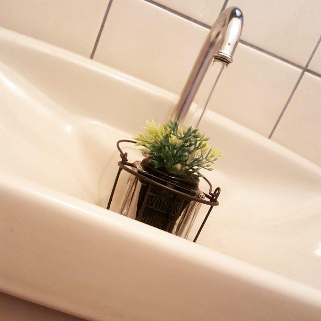 トイレの目隠し実践例|植物4