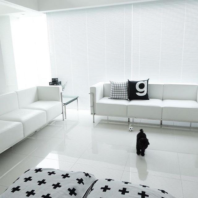ブラインドとカーテンのモダンな実例3