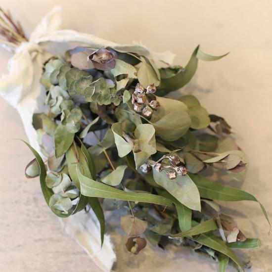 定番のおすすめのお花① ユーカリ