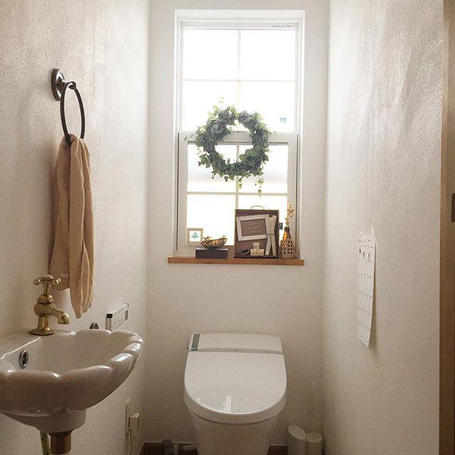 トイレの目隠し実践例|植物2
