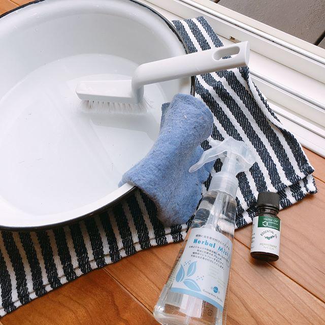 ミントの精油を入れた水で網戸掃除