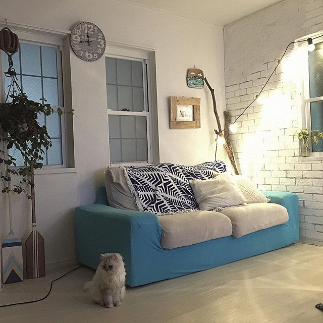 ビビッドカラーで作る女性の一人暮らし部屋