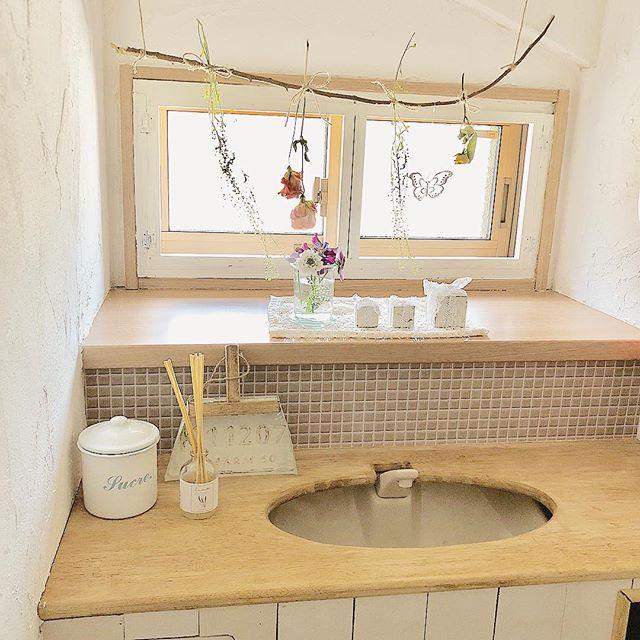 トイレの目隠し実践例|植物3