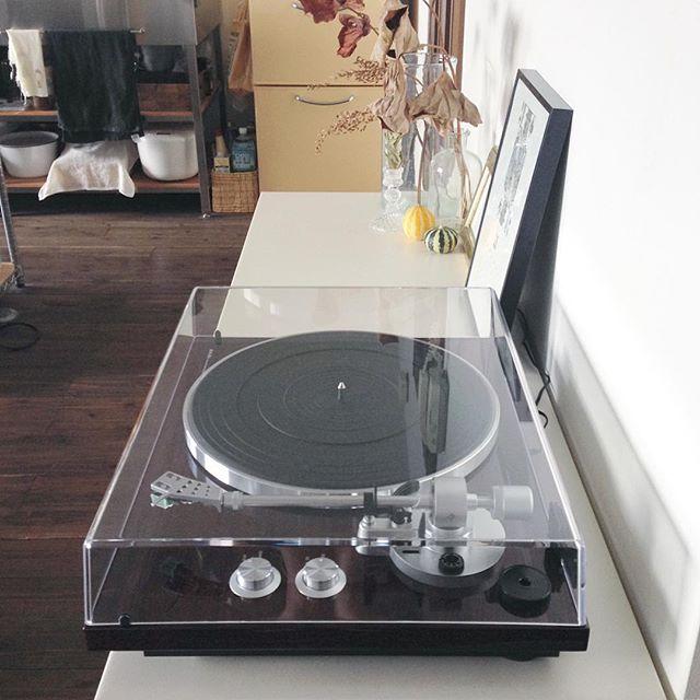 レコードを飾るおしゃれなアイデア【コツ】10