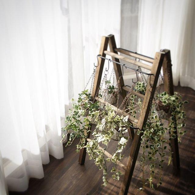 ワイヤーホルダーで観葉植物を吊るす方法