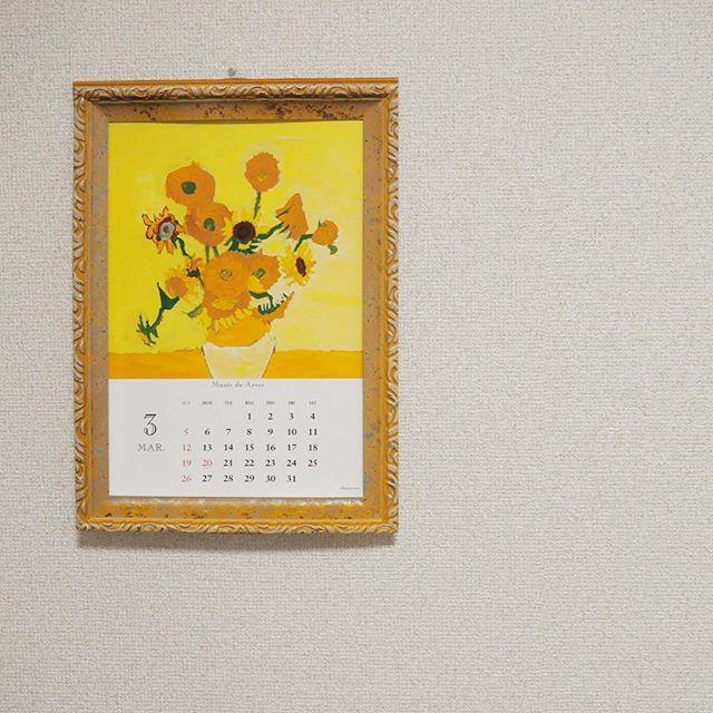 金運アップには西に黄色い花