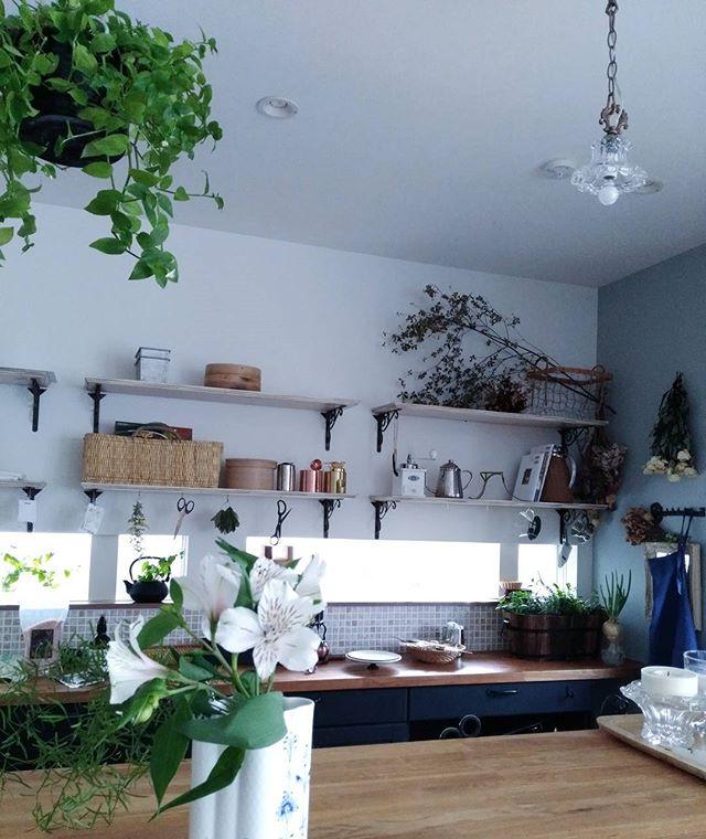 観葉植物をシンプルに吊るすおしゃれな方法