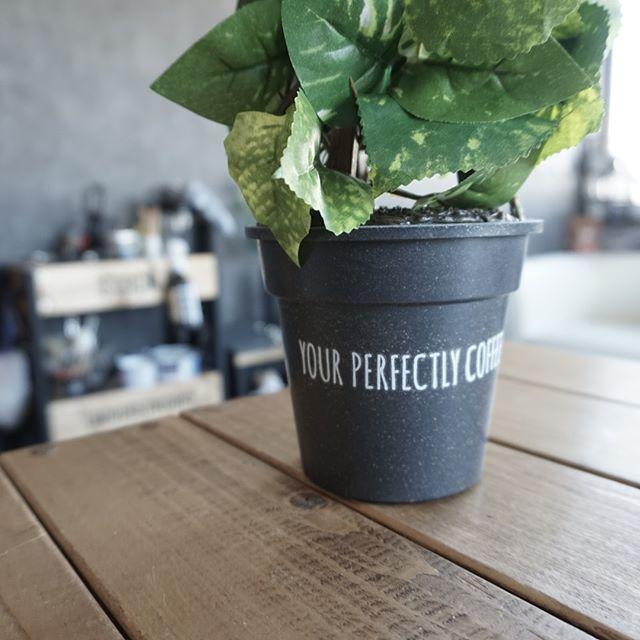 植木鉢16