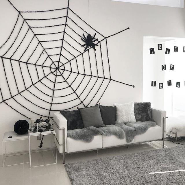 ダイナミックな蜘蛛の巣がすごい!