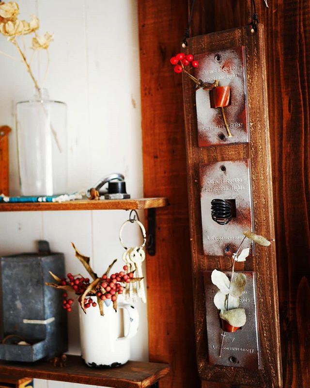 100均インテリアに冬の植物を飾り付け