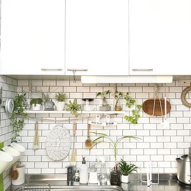 壁紙 キッチンデコレーション