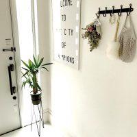 毎日癒される玄関に!グリーンを使った玄関アイデア集を大公開