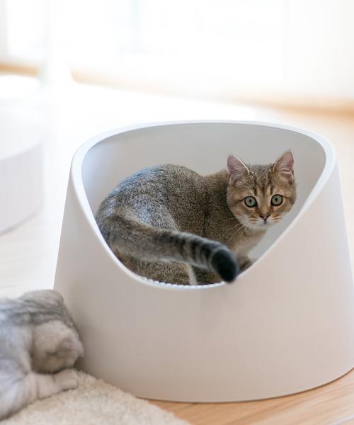 [KYOETSU HONTEN] 「pidan/ピダン」猫用トイレ オープン型