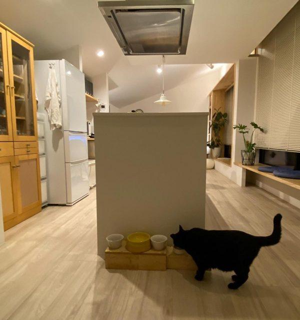 猫ちゃんのごはんスペースはキッチン横に