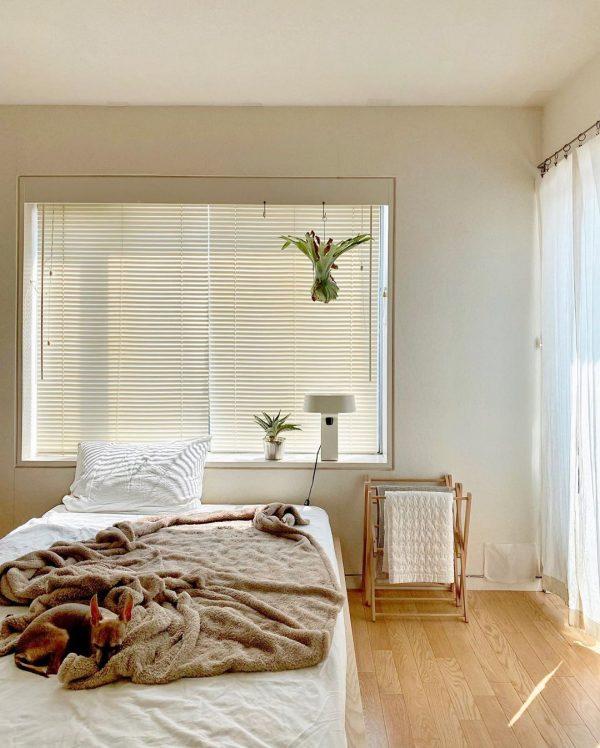 中央にベッドを配置するお部屋のレイアウト