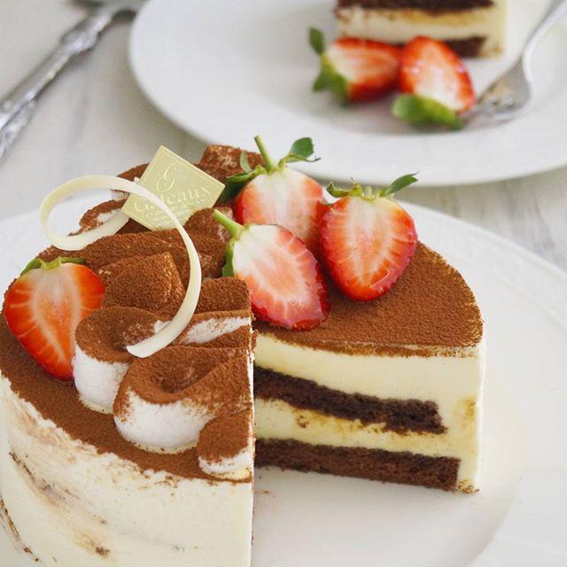 本命の彼氏に♪ティラミスケーキ